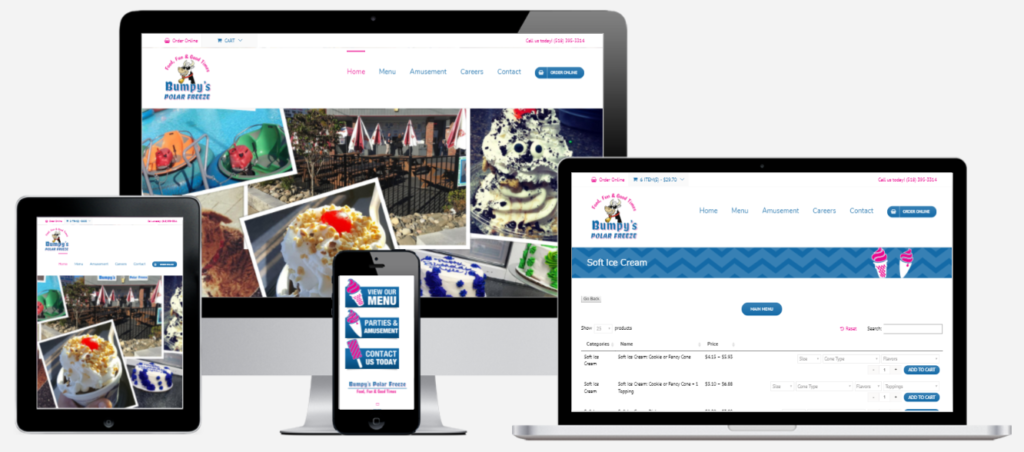 Bumpy's Polar Freeze Website Design Capital District Digital