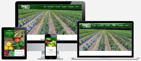 Engel's Acres Farm Website Design Troy, NY