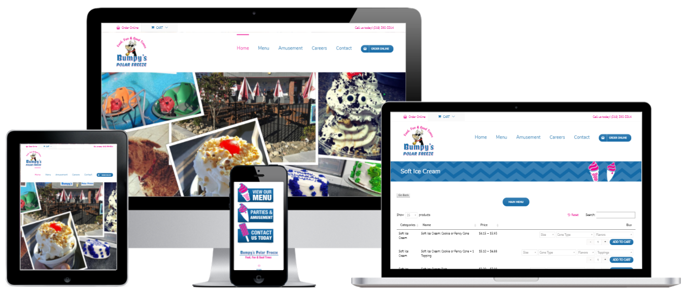 Bumpy's WordPress E-commerce Website Design Albany, NY - Capital District Digital