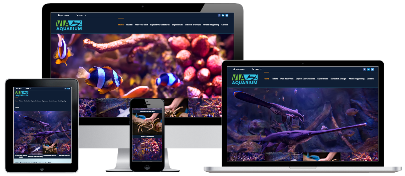 VIA Aquarium WordPress E-Commerce Website Design Albany, NY - Capital District Digital