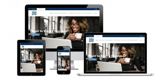 Capital District Digital- Website Design Albany NY- Biz Idea Shower